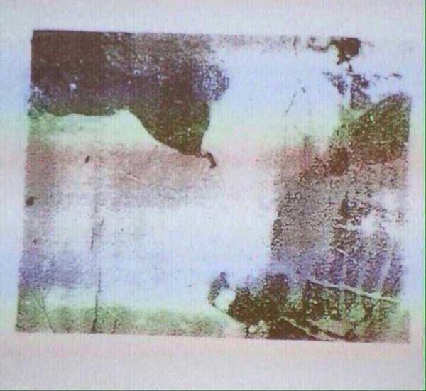 Оптический тест на выявление шизофрении «Корова»